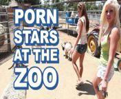 BANGBROS - Sexy Pornstars Invade Famous Zoo & Fuck Zookeeper from zoo xxx inemal